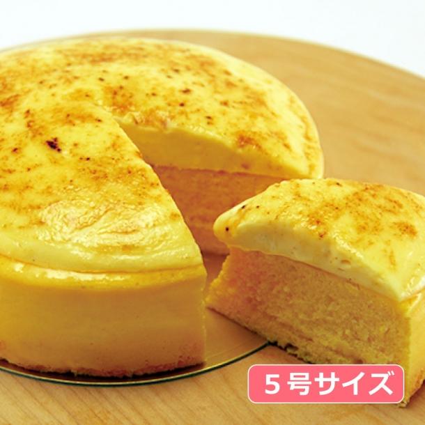 ケーキ とろ 生 チーズ